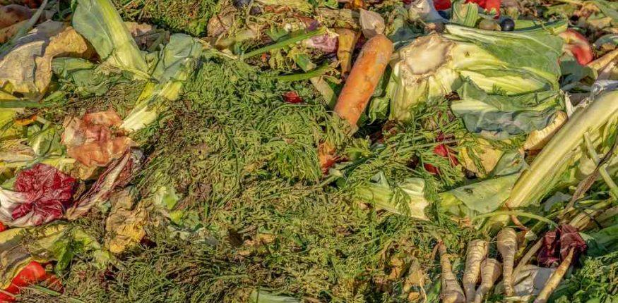 składowane odpady komunalne ulegające biodegradacji